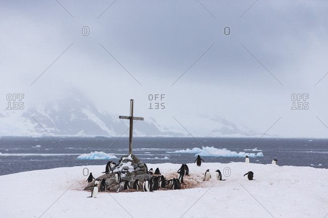 A cross marks the British Antarctic Monument Trust on Petermann Island.