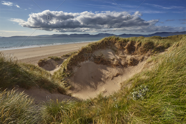 Sand dunes on Rossbeigh beach.