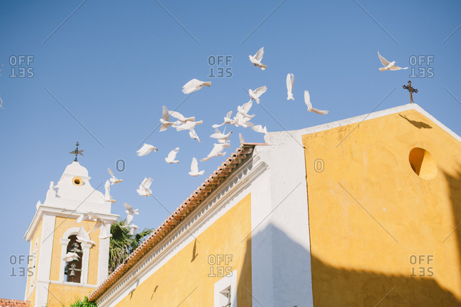 Birds flying from chapel roof - Portugal