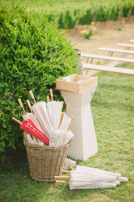 Umbrella basket in orchard setting
