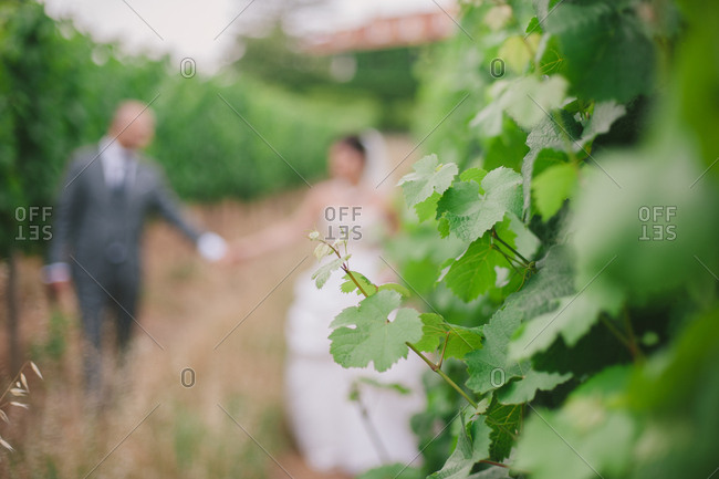 Bride and groom in an orchard