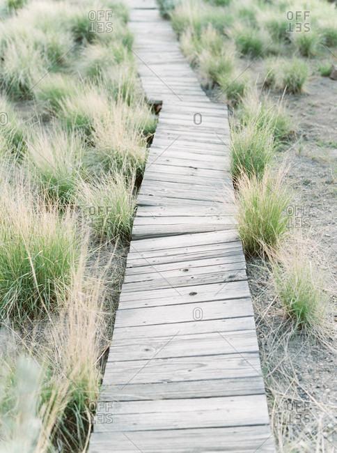 Crooked wooden boardwalk