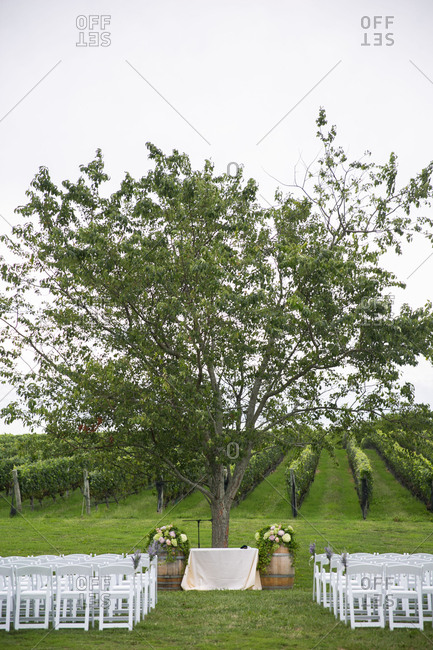 Wedding set up in vineyard