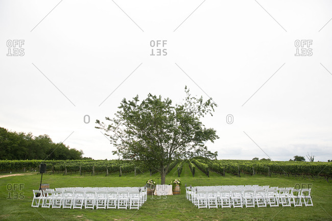 Wedding set up near a vineyard
