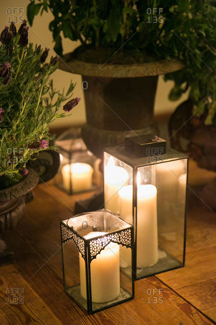 Lanterns and plants decorating floor