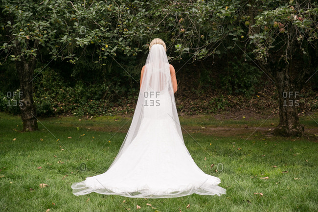 Bride with a long veil outside