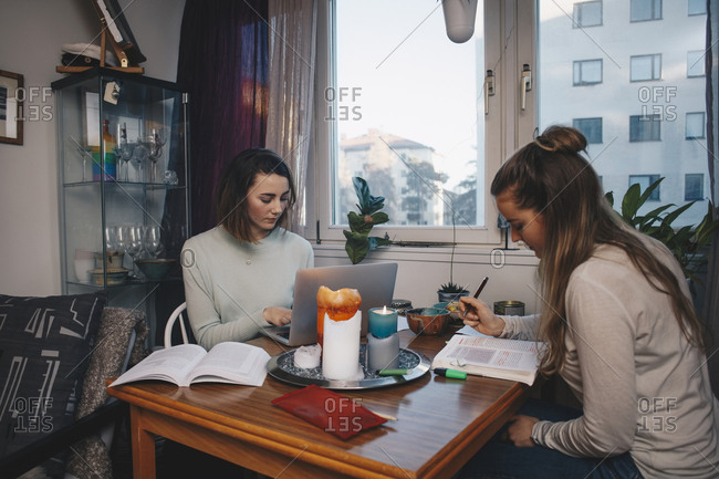 Young female students studying together in college dorm room