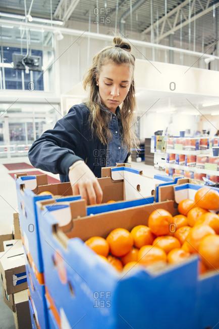 Female worker taking at fresh oranges in blue cardboard box at supermarket