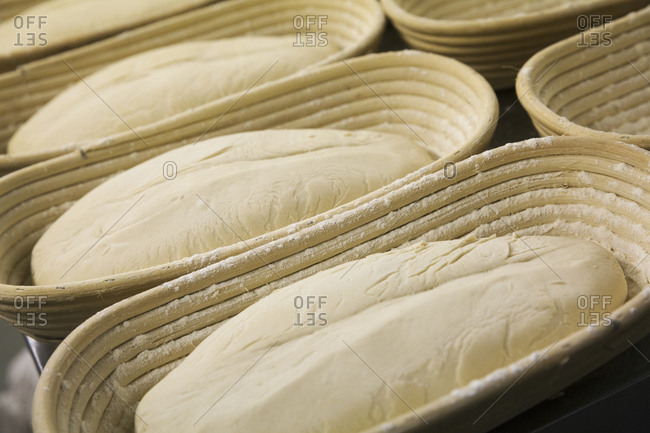 Close up of bread dough in proving baskets