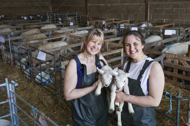 Two smiling women standing in a stable, holding newborn lambs