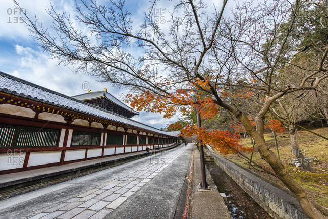 Nara, Japan  - December 23, 2014: The walkway and landscape next to the Daibutsuden Hall of the Todaiji Temple