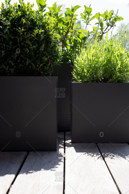 Two large geometric planters in a modern garden