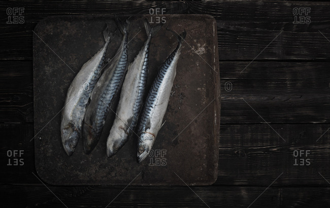 Mackerel fish on a sheet pan