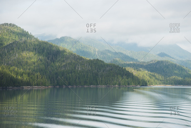 Dense green forest rises out of rippling ocean waters under a cloudy fall sky
