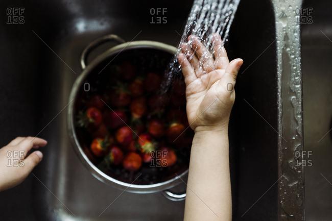 Child rinsing strawberries in sink