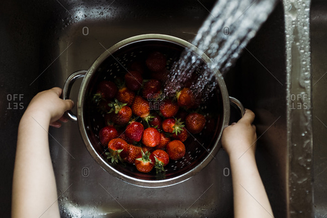 Child washing strawberries in sink