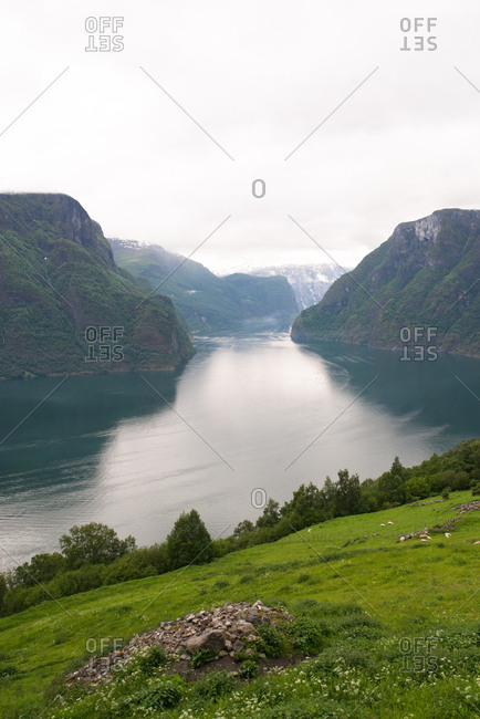 Scenic view of fjords and green hillside
