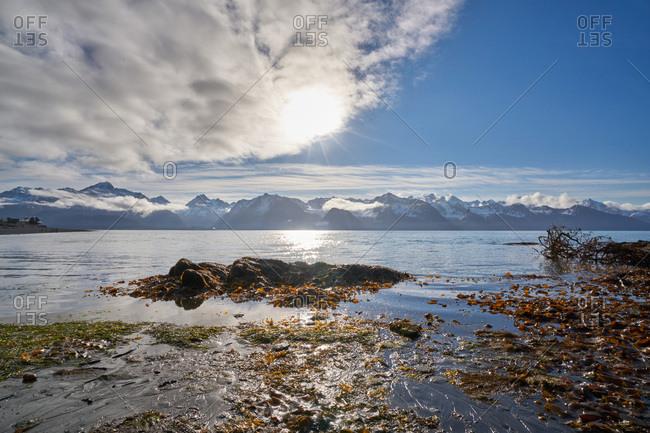 A sunlit mountain waterway, Seward, Alaska