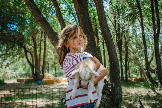Boy holding a baby goat at farm