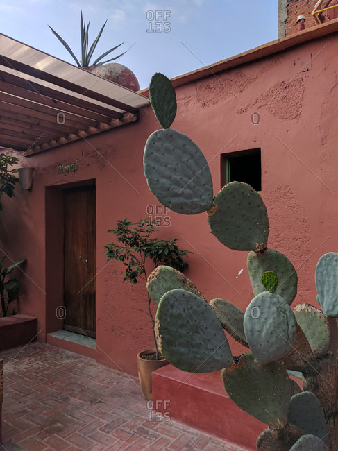 Courtyard of desert style home