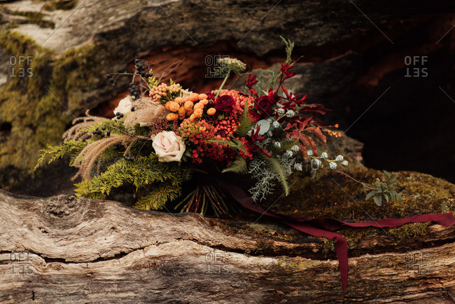 Bouquet of woodland flowers and plants on a fallen log
