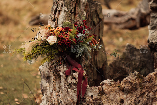Woodland bouquet of flowers and plants resting on a tree stump