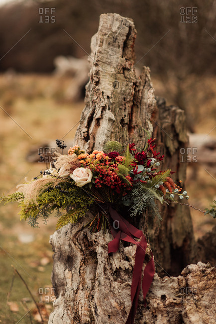 Bouquet of woodland flowers and plants on a weathered tree stump