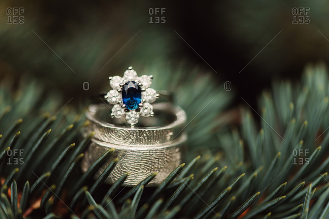 Wedding and engagement ring on pine branches