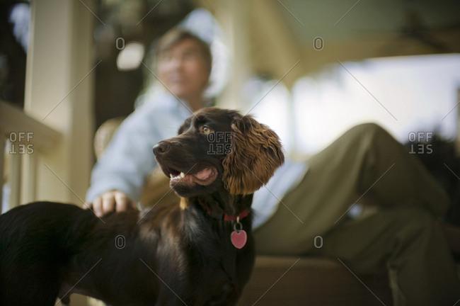 A man petting his dog on the veranda