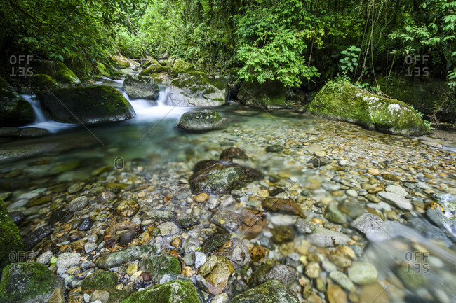 Atlantic Rainforest river in Serrinha do Alambari Ecological Reserve, Rio de Janeiro, Brazil