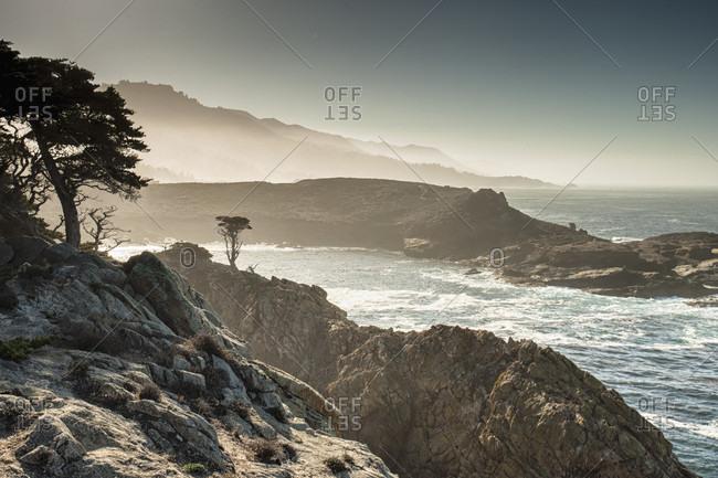 Morning Sun highlights cypress trees at Point Lobos