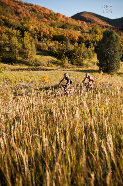 Mountain bikers in field