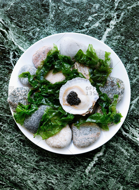 Plate of oysters with caviar and seaweed