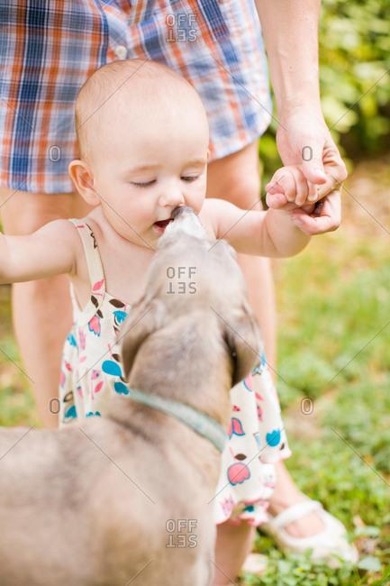 Dog licking baby girls face