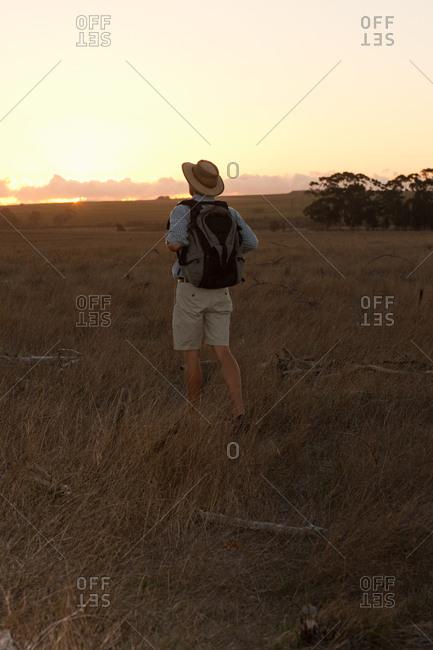 Man on safari, Stellenbosch, South Africa