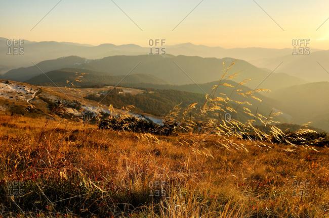 Sheshul Mountain area, Carpathian Mountains, Ivano-Frankivsk region, Ukraine