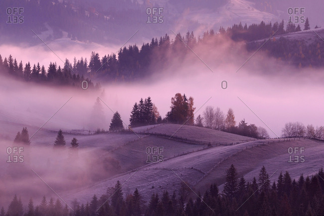 Misty sunrise, Krasnik village area, Carpathian Mountains, Ivano-Frankivsk region, Ukraine