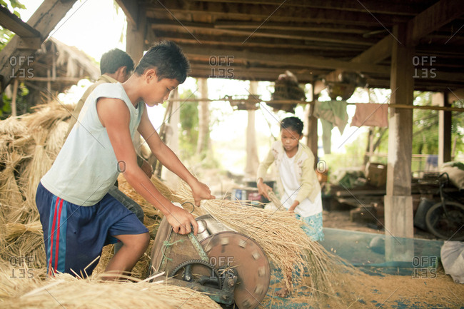 Si Phan Don, Laos - November 24, 2012. Two boys are working on the rice thresher machine in Si Phan Don