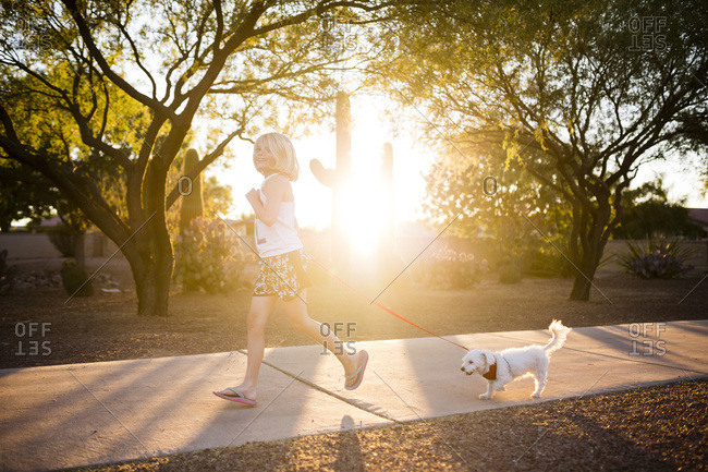 Little girl walking a dog in the afternoon sunlight