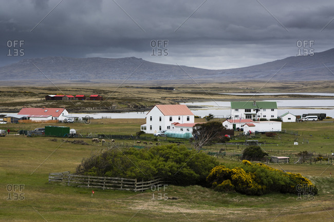 The settlement of Darwin in East Falkland