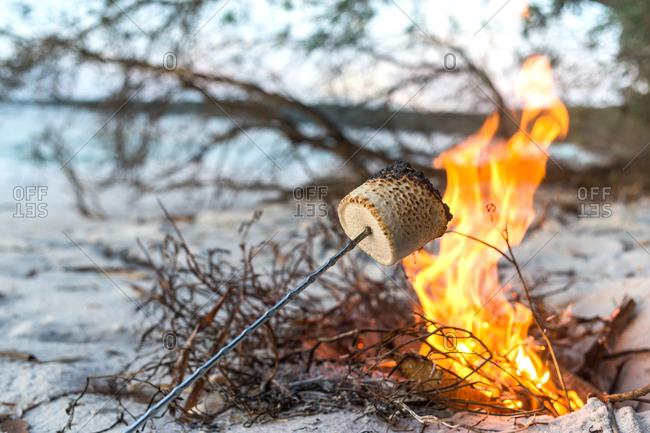 Marshmallow roasting over beach fire