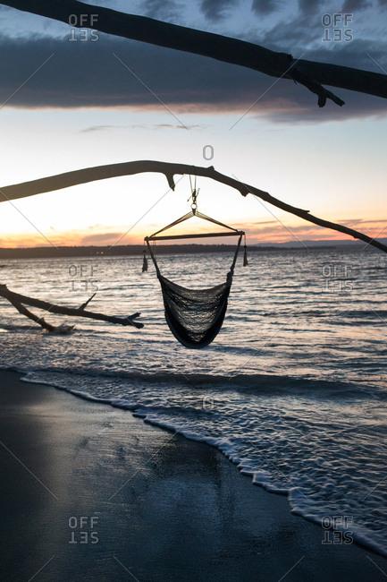Hammock chair hanging on beach