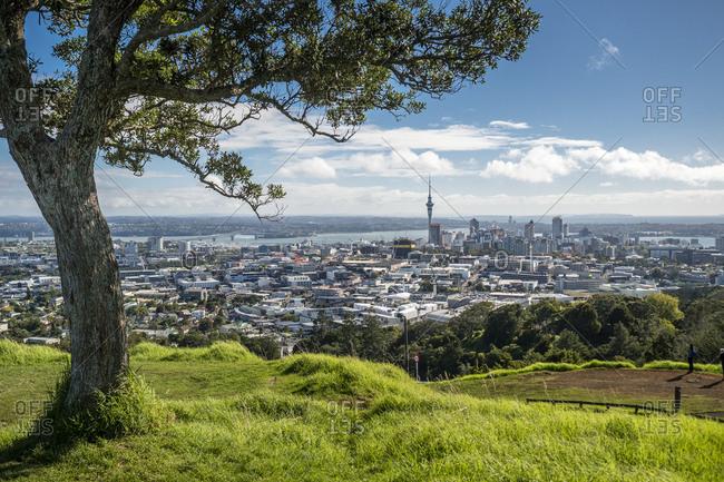 New Zealand- North Island- Mount Eden- Auckland- cityscape