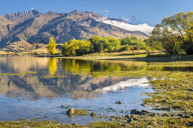 New Zealand- South Island- Gledhu Bay at Lake Wanaka
