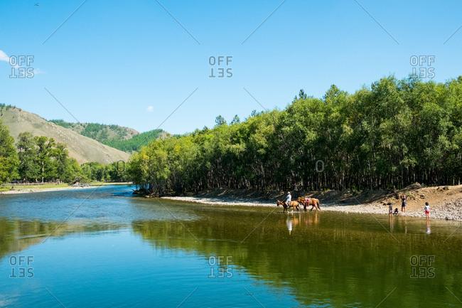 Ulan Baatar, Mongolia - August 22, 2015: Man crossing a river on horse back in Gorkha Terelj National Park, Mongolia