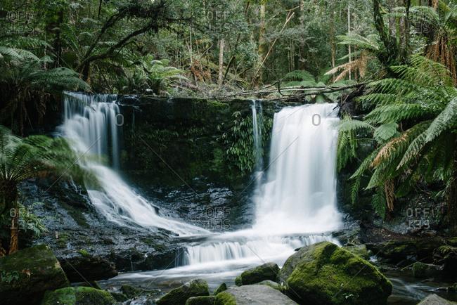 Waterfall in a jungle setting