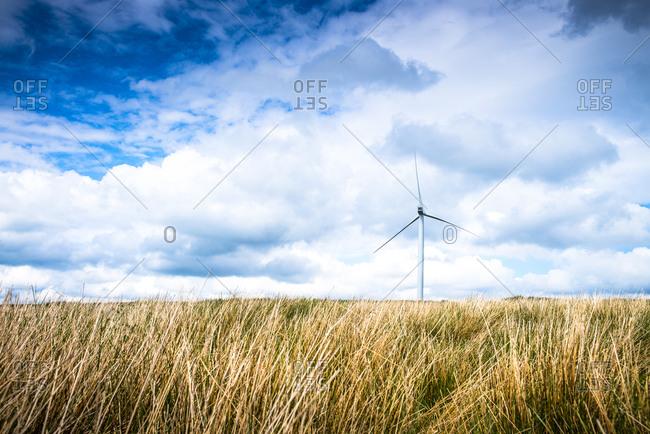 Wind turbine in rural field