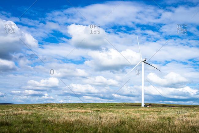 A wind turbine in a rural setting
