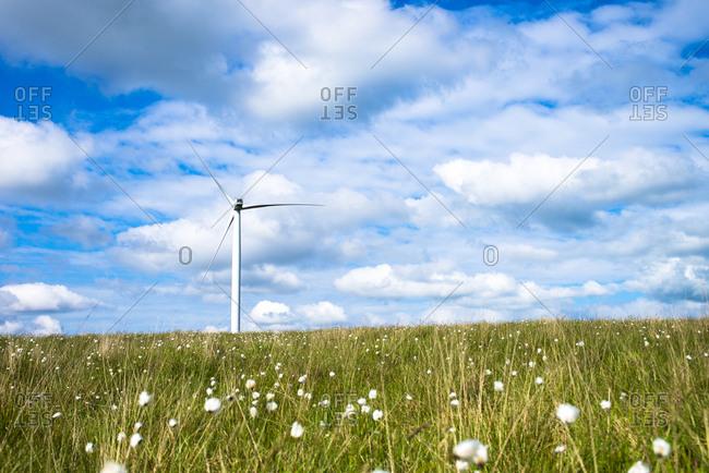 A wind turbine in prairie setting