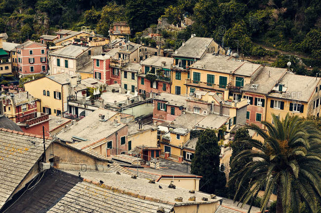 Aerial view of colorful buildings in Portofino, Italy